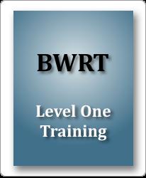 Brainworking Recursive Therapy - Level 1 image